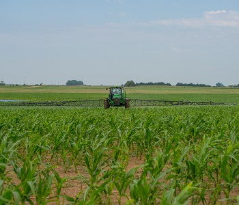 Corn - Spray on Profits