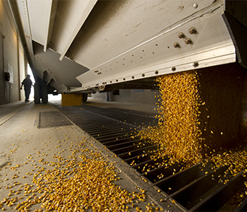 PRODUCERS INVITED TO UPCOMING GRAIN MARKETING MEETINGS