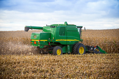 Top Factors to Consider Going into Harvest