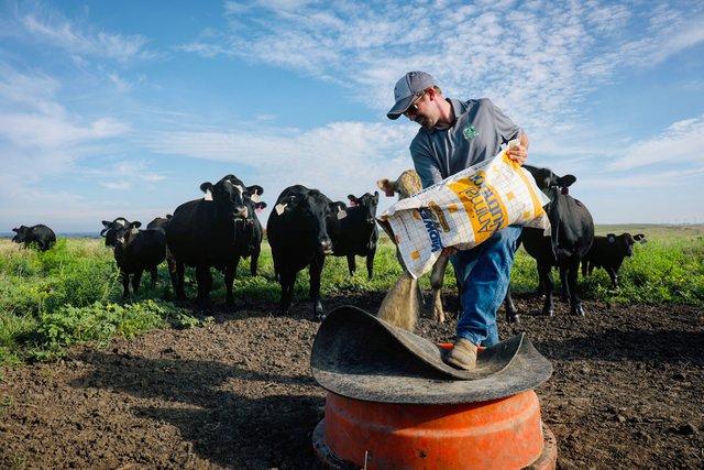 Countryside Feed LLC Kansas