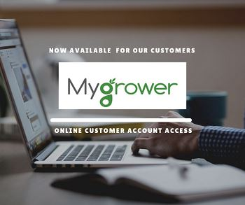 New Program for Online Customer Account Access
