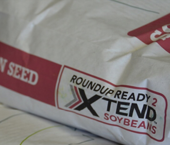 What You Need to Know About Xtend® and Liberty Link® Beans