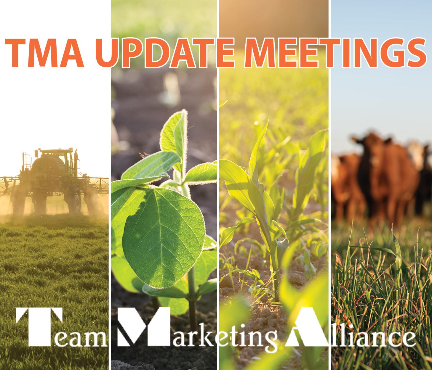 TMA Update Meetings