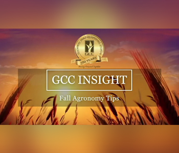 GCC Insight:  Fall Agronomy Tips