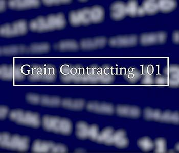 Grain Contracting 101 Series - Deferred Payment Contract