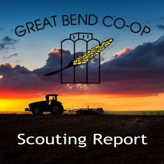 Scouting Report - September 23, 2019