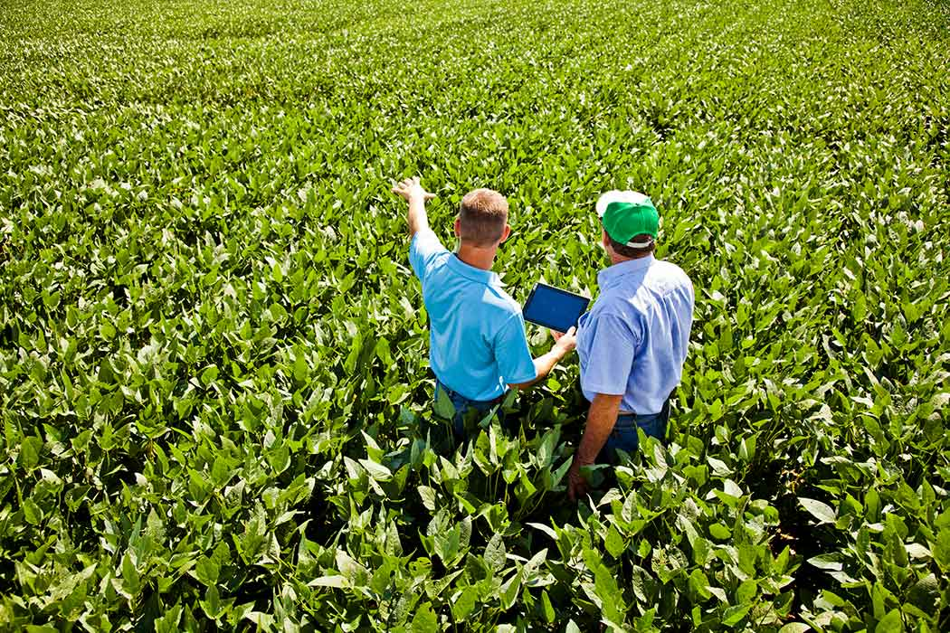 2 men standing in field talking about Heritage agronomy