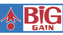 Big Gain - Logo