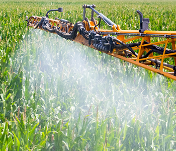 Expect Results from Early Fungicide Applications