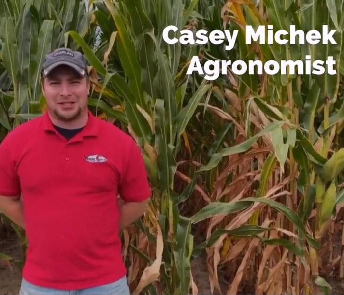 Casey Michek Agronomist
