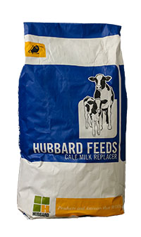 Hubbard Calf Beginner Plus